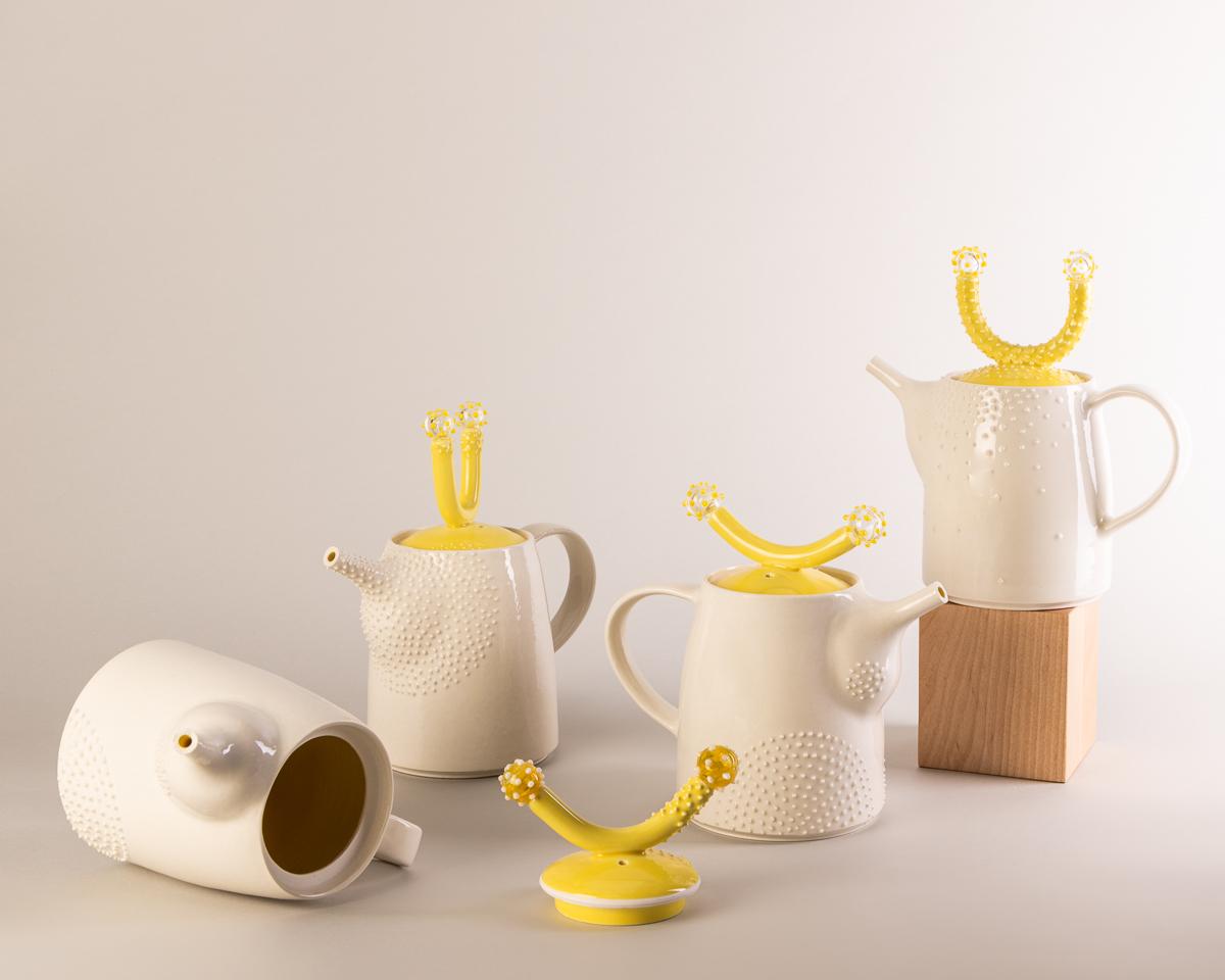 Vu des théières disponibles dans la collection Chair de poule